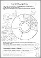 AB 2 – Der Ernährungskreis