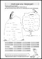 AB 11 – Greifvogel oder Singvogel?