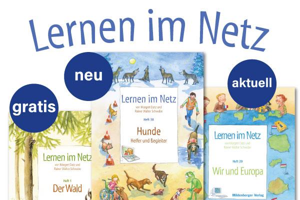 Lernen im Netz