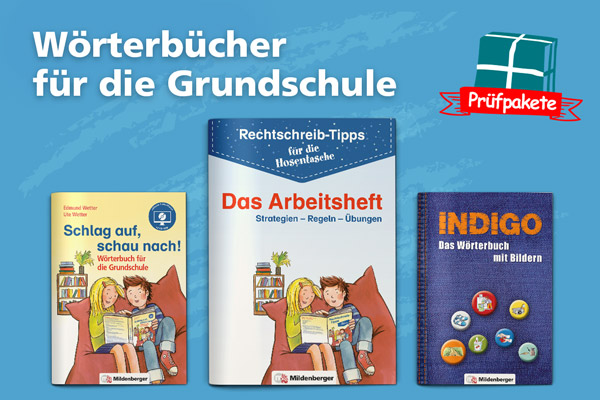 Wörterbücher für die Schule